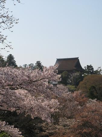 吉水神社から