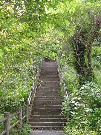 階段を上った先に本堂が